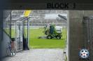 DFB-Pokal: Löwen vs. Störche