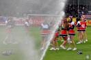 Kieler SV Holstein vs. VfL Osnabrück